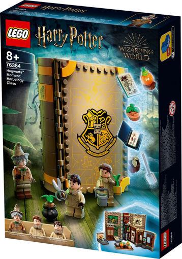Lego Hogwarts™ Moment: Herbology Class 76384